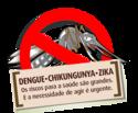 """Dia D – de Combate ao Aedes aegypti"""